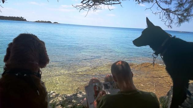 dog-friendly beach in Rovinj