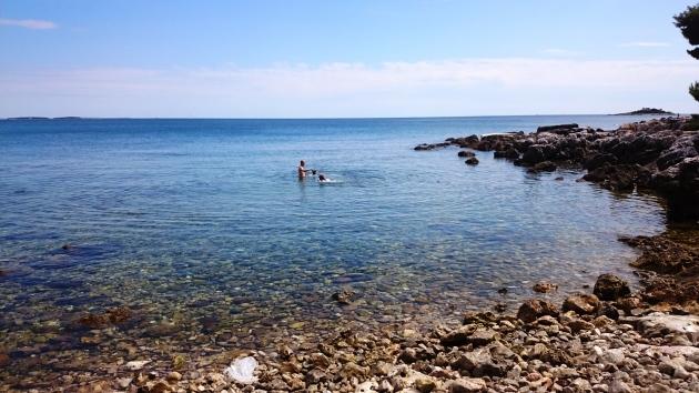 Rovinj dog-friendly beach
